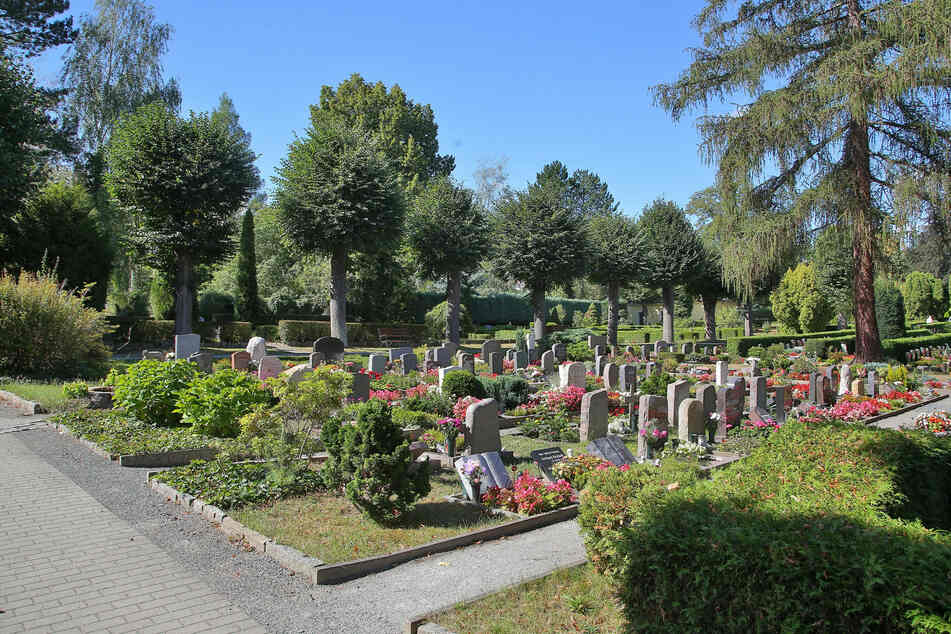 Auf diesem Friedhof in Heidenau trieben die Grabräuber ihr Unwesen.