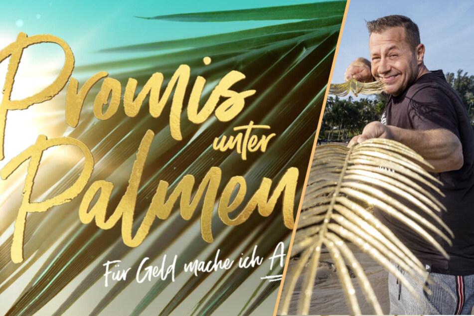 """Promis unter Palmen: Nach Tod von Willi Herren: """"Promis unter Palmen"""" wird abgesetzt!"""