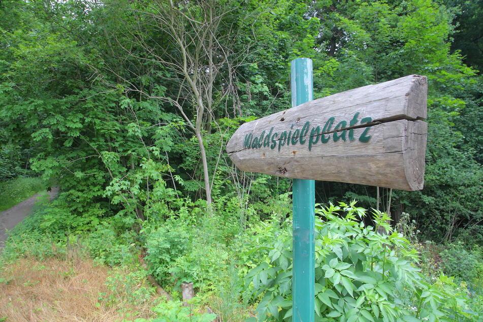 Wald oder Park? Der Rat entscheidet zum Albertpark samt Waldspielplatz.