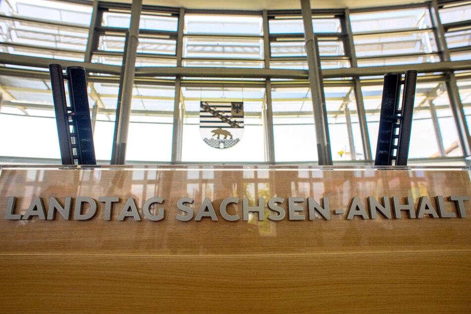 Laut LAMSA fehlt es in der Landespolitik Sachsen-Anhalts an Vielfalt.