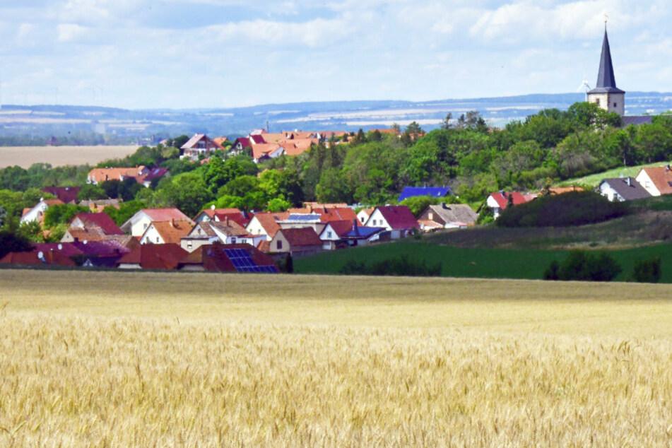 Blick auf ein Dorf hinter einem Weizenfeld. Die Präsenz von Familienunternehmen wirkt sich einer Studie zufolge positiv auf Bevölkerung, Wohlstand, Wirtschaftskraft und Erfindungsreichtum der Regionen aus. (Symbolbild)