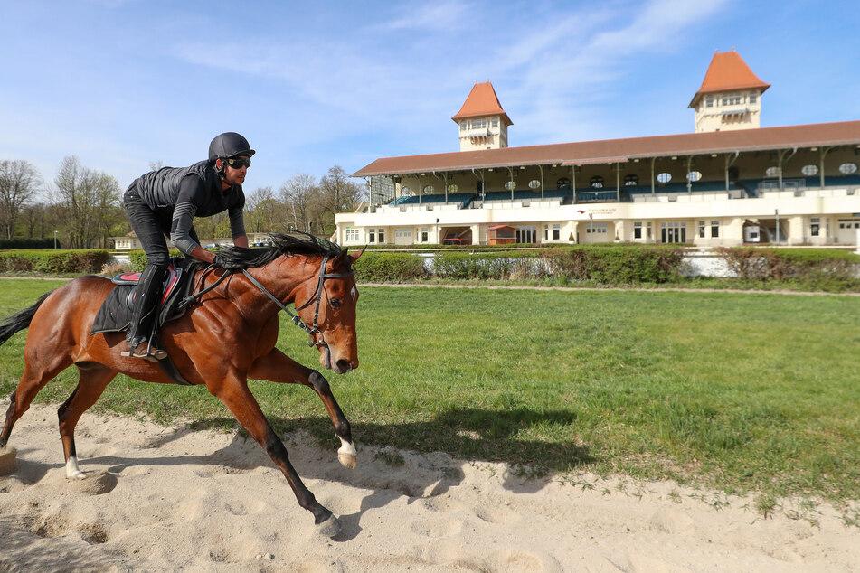 Pferderennen dürfen wegen des Coronavirus nur vor leeren Rängen stattfinden. (Archivbild)