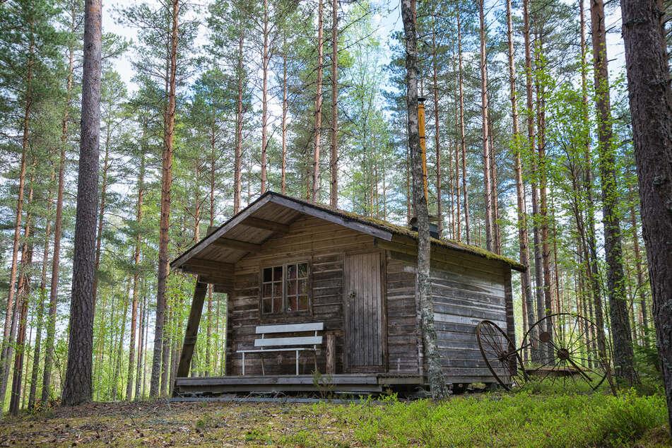 Mehr als 26 Jahre lang wurde die Frau in einer Holzhütte im Wald festgehalten.