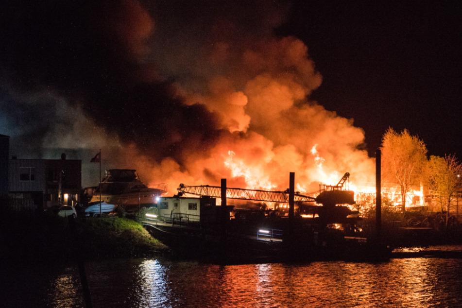 Hamburg: Flammenmeer am Hafen: Explosionen machen Feuerwehr zu schaffen