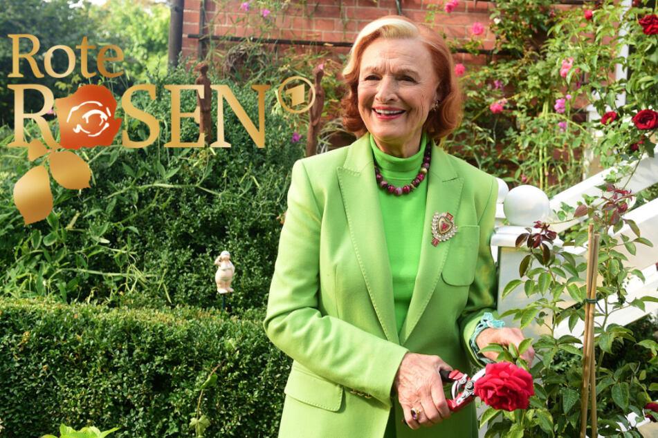 """Brigitte Antonius (87) spielt seit der ersten Folge die Johanna Jansen in der Serie """"Rote Rosen""""."""