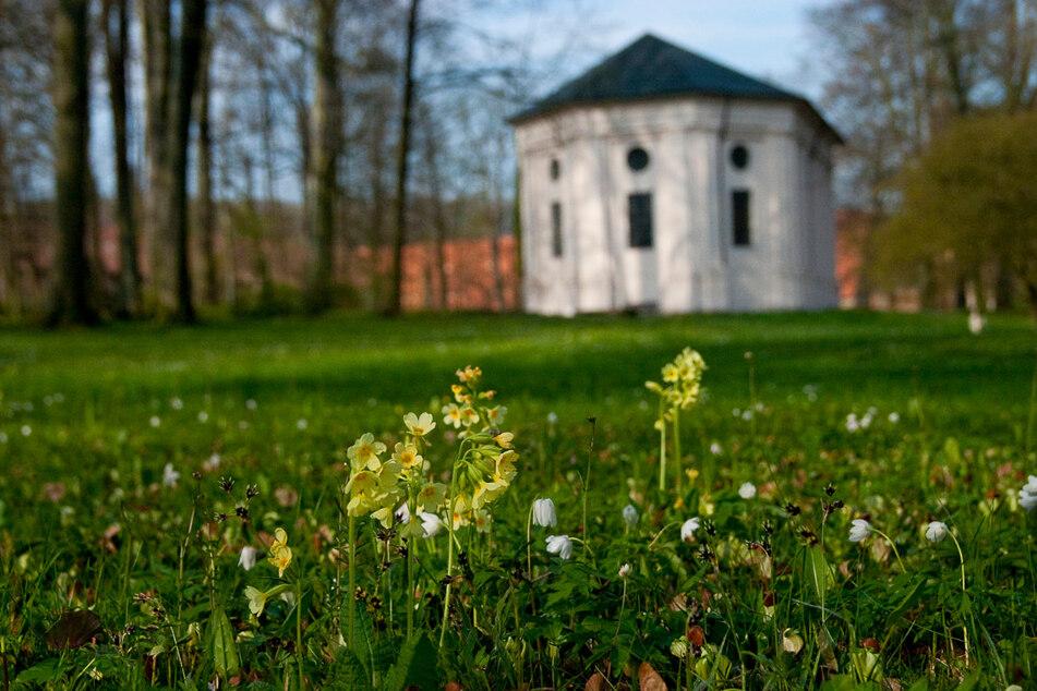 Beschaulich: der Klosterpark Altzella.