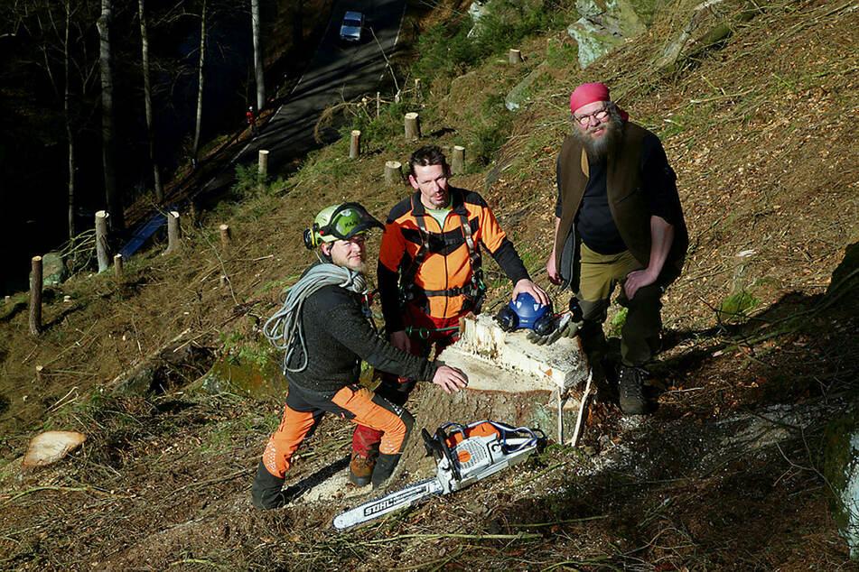 Steffen Knorre, Dirk Rimbus und Tim Dietze (v.r.) beräumen den steilen Hang von den kaputten Fichten.