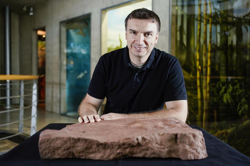 Sebastian Voigt, Leiter des Urweltmuseums Geoskop.