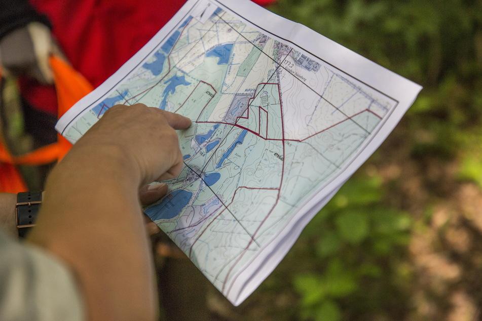 Hier sind wir: Die Teiche und Sumpfgebiete um Biehain bei Niesky (Landkreis Görlitz) bieten Unterschlupf für Wildschweine.