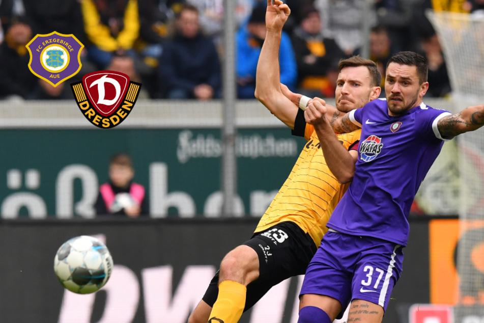 Nächster Dynamo-Leitwolf beim lila Rivalen! Ballas trifft in Aue auf Gonther und Testroet