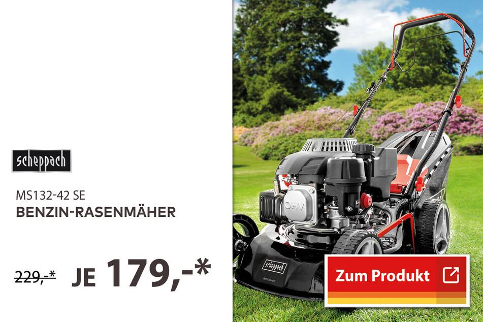 Benzin-Rasenmäher für 179 Euro.