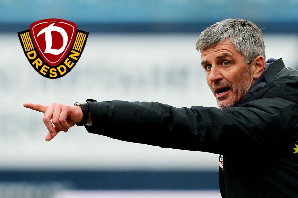 Dynamo-Gegner Hansa Rostock: Dornröschenschlaf, bis Jens Härtel kam!