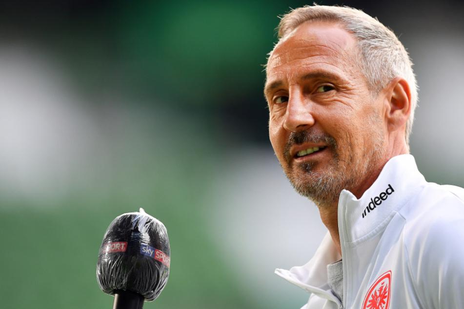 Das Foto vom 3. Juni zeigt Adi Hütter, den Cheftrainer von Eintracht Frankfurt.