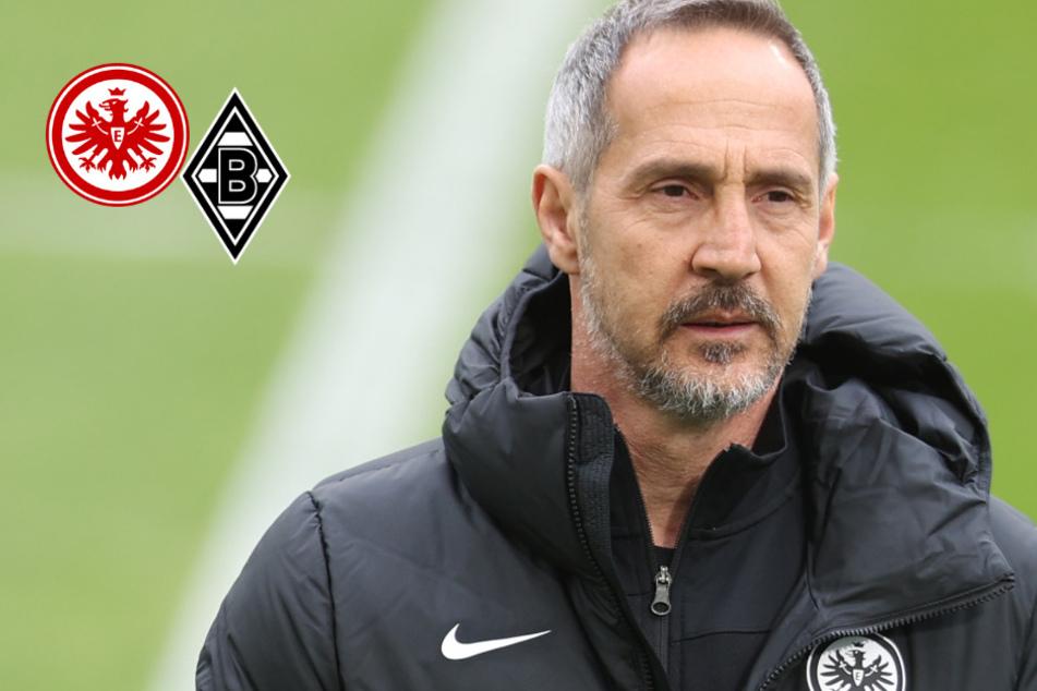 Jetzt ist es amtlich! Adi Hütter verlässt Frankfurt und wechselt nach Mönchengladbach