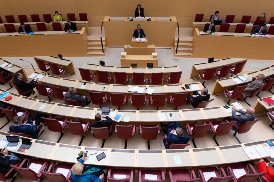 Die Freien Wähler fragten acht Mal nach, die Grünen 1204 Mal.