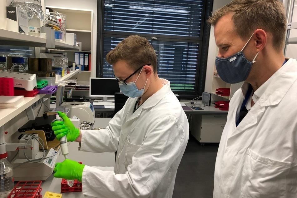 Virologen wie Hendrik Streeck und sein Team kämpfen weltweit gegen SARS-CoV-2.