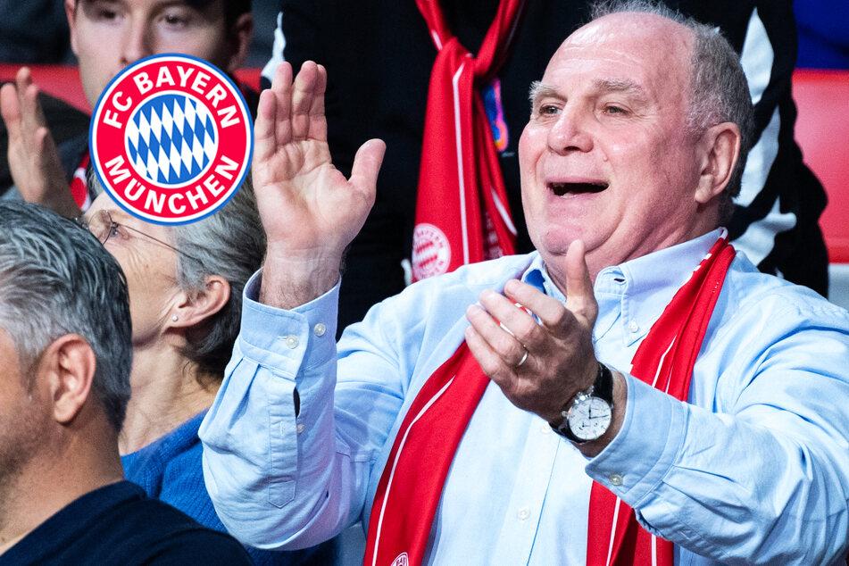 """Hoeneß: Basketball soll zur """"zweiten Kraft"""" hinter Fußball werden"""