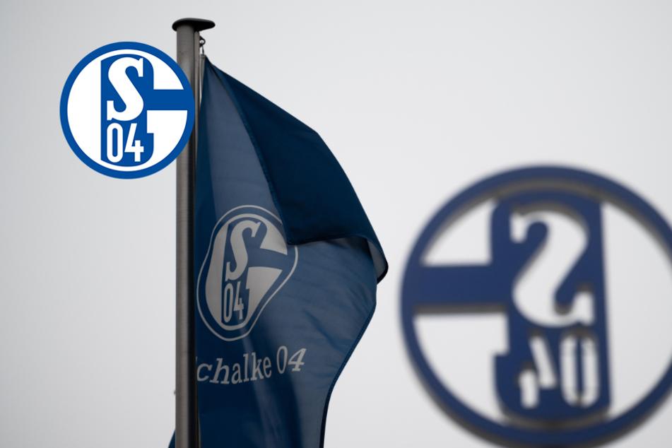 Jetzt ist raus, wer das Training der Schalke-Profis leitet