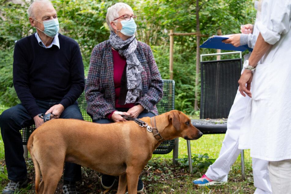 Binis Besitzer Hildegard und Walter Brühschwein machten sich Sorgen um ihren geliebten Hund.