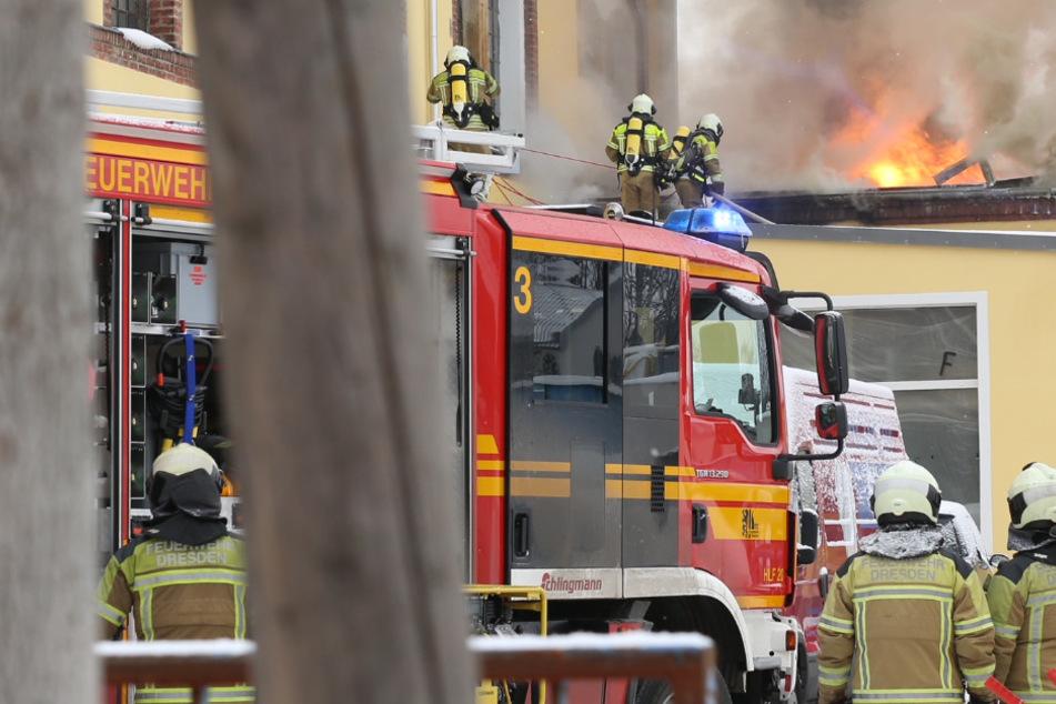 Nach Großbrand in Niedersedlitz: Das ist die Bilanz der Dresdner Feuerwehr!