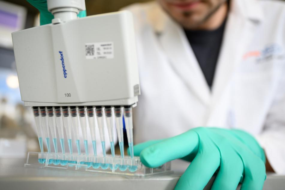 Hier bemühen sich Forscher, einen Impfstoff gegen das Coronavirus zu entwickeln