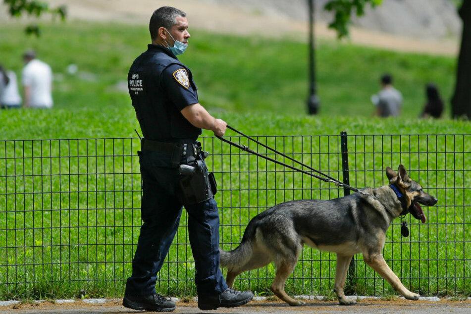Frau ruft die Polizei, nachdem ein Mann sie bittet, ihren Hund an die Leine zu nehmen