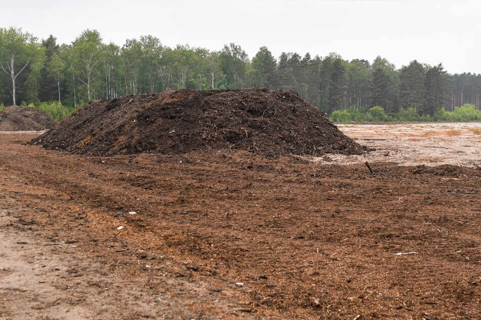 Auf dem kahlen Kippenboden begann er Kompost aufzuschütten - das wurde ihm nun untersagt.