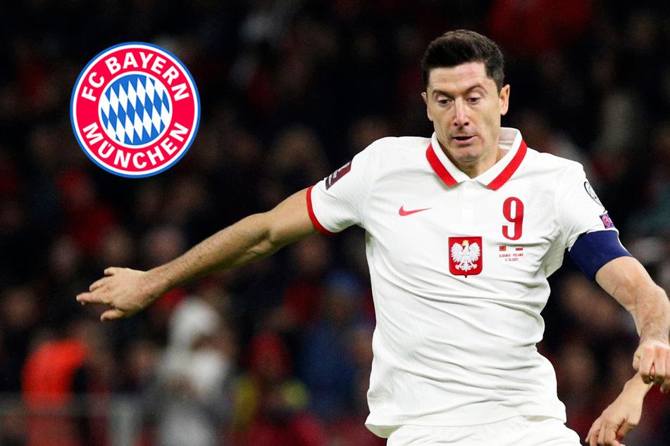 Flaschen nach Spielern geworfen: Lewandowski über bedrohliche Partie gegen Albanien