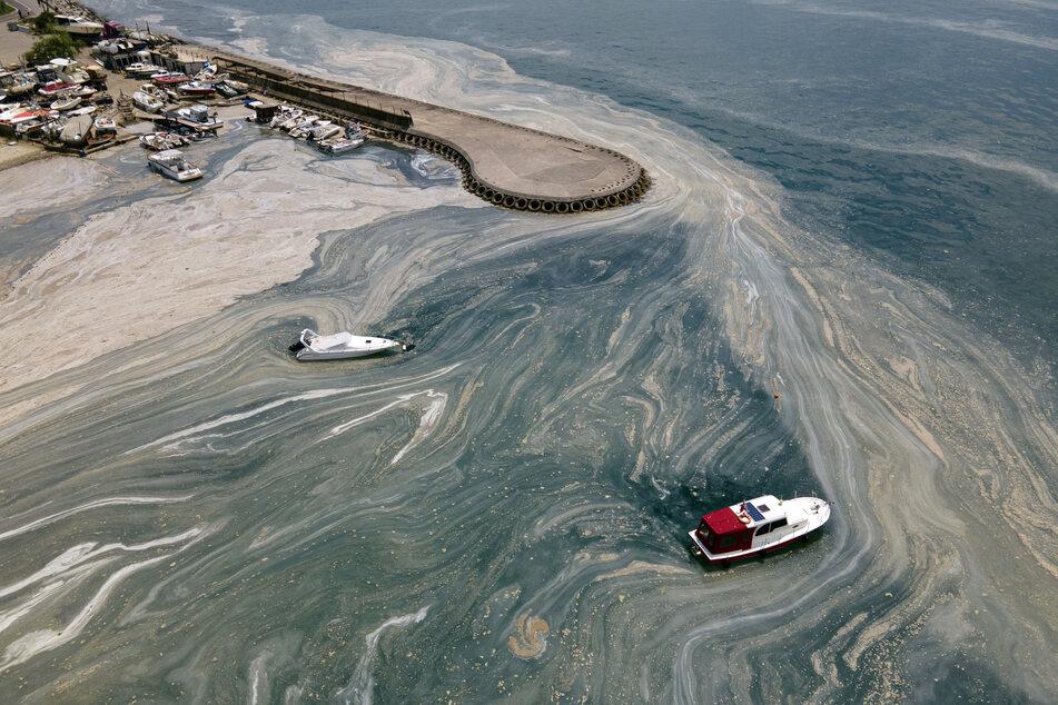 Eine riesige Masse von Meeresschleim schwimmt auf dem Meer am Caddebostan-Ufer.