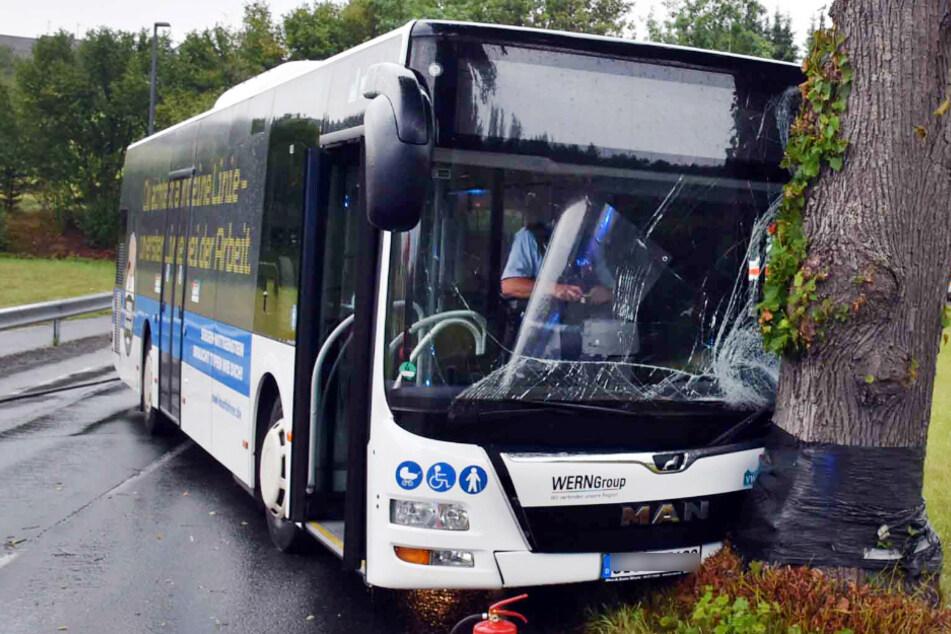 Schulbus fährt gegen Baum: Mehrere Kinder und Jugendliche verletzt