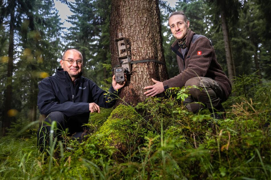 Auf dieser Kamera entdeckten Sven Erlacher (51,l.) und Dominik Kwetkat (30) die aktuellsten Aufnahmen eines Wolfes im Forschungsgebiet.