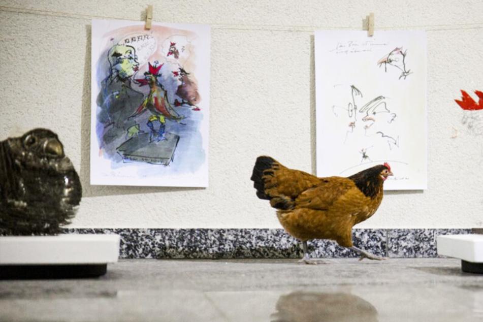 Chemnitz: Zur Vernissage kamen nur Hühner! Diese Schau ist zum Gackern!
