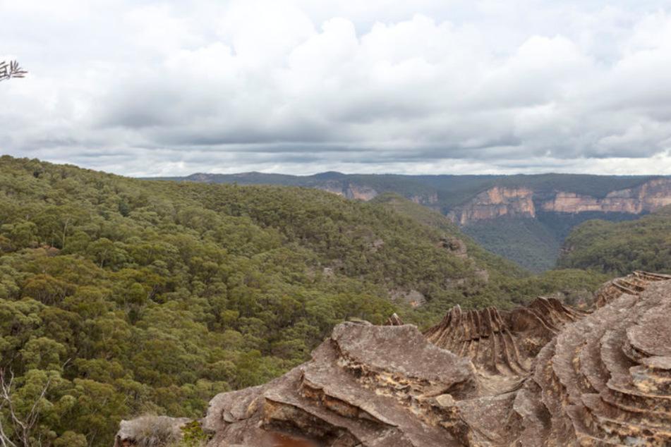 Das Unglück ereignete sich in den Blue Mountains in Sydney.