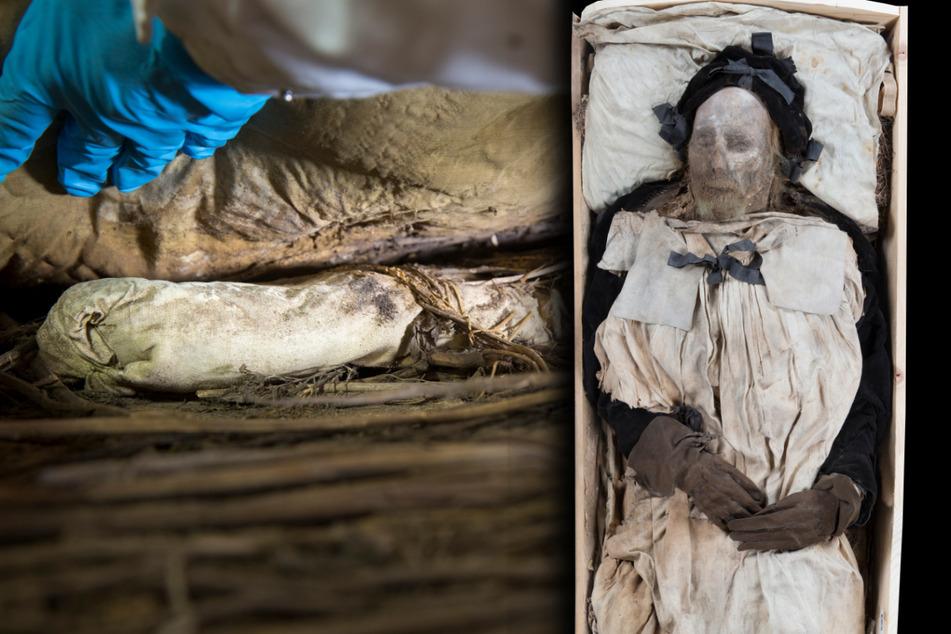 Nach Fund von Bischofs-Leiche mit Fötus: Forscher lüften endlich das Grabgeheimnis