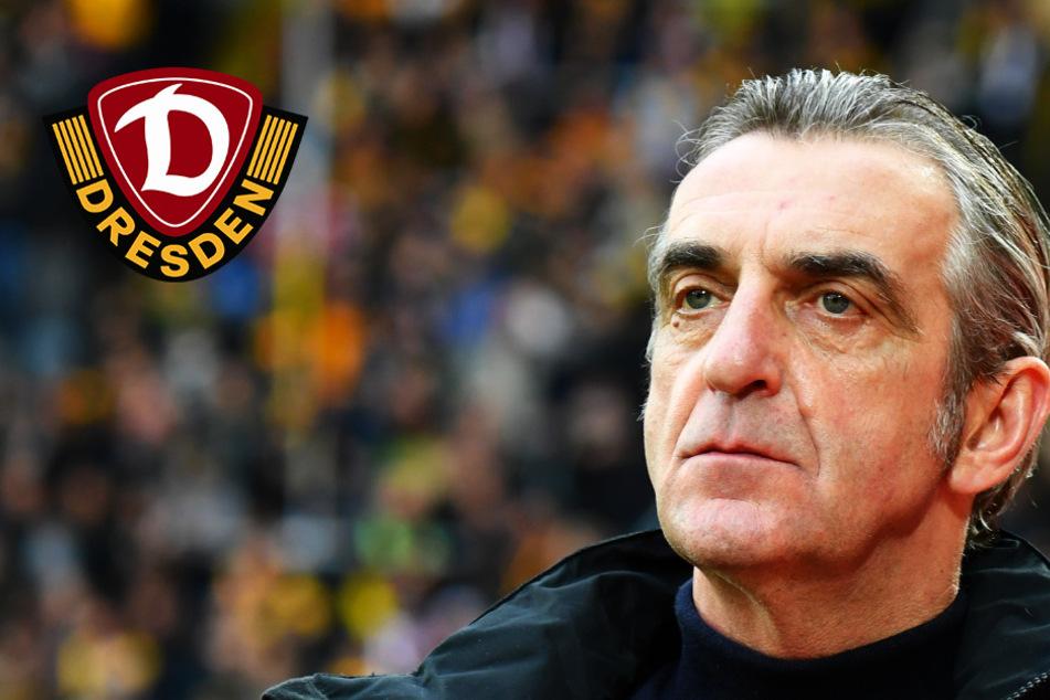 """Dynamo geht nicht in Berufung: """"Fällt schwer, diese Ungerechtigkeit zu akzeptieren"""""""