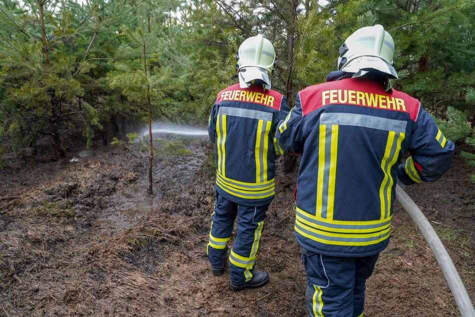 Ende März mussten die Kameraden der Feuerwehren Königswartha und Umgebung zu einem Waldbrand in Königswartha ausrücken. Eine weitere Ausbreitung der Flammen konnte verhindert werden.