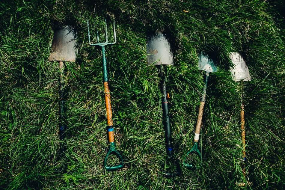 Gerade im Herbst lohnt es sich, seine Gartenwerkzeuge zu reinigen und schick fürs kommende Gartenjahr zu machen.