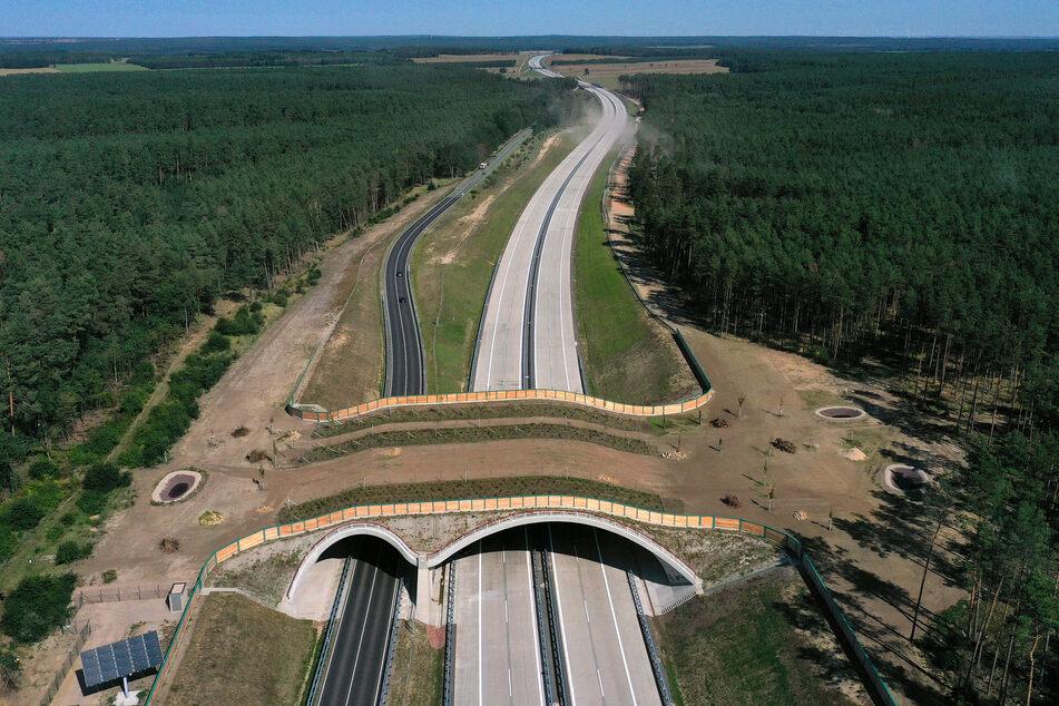 Ein Teilstück der Autobahn 14 und eine Wildtier-Überführung zwischen den Anschlussstellen Colbitz und Tangerhütte.
