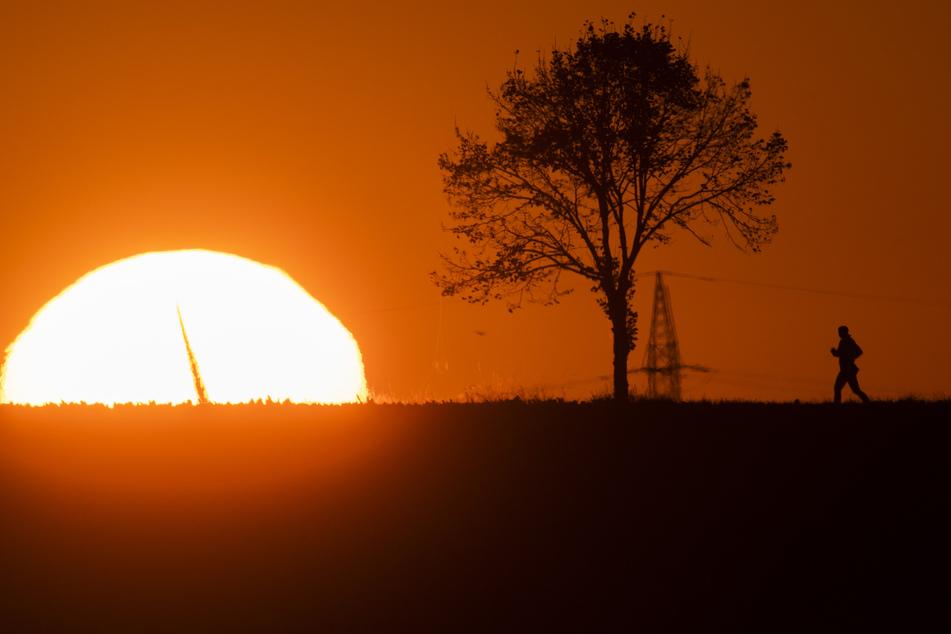 2020 war eines der wärmsten Jahre seit Beginn der Aufzeichnungen.