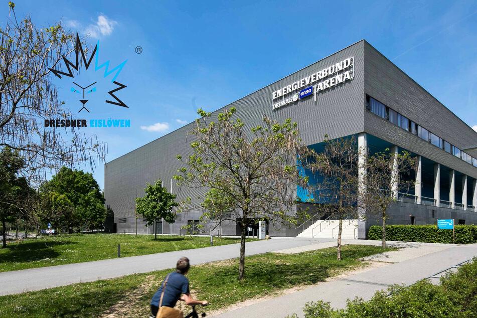 Neue Sitzplätze für die Dresdner Eislöwen? Streit um Hilberts Millionen-Idee