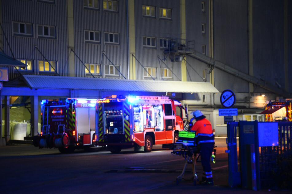 Tierfutter-Firma brennt: Mitarbeiter verletzt