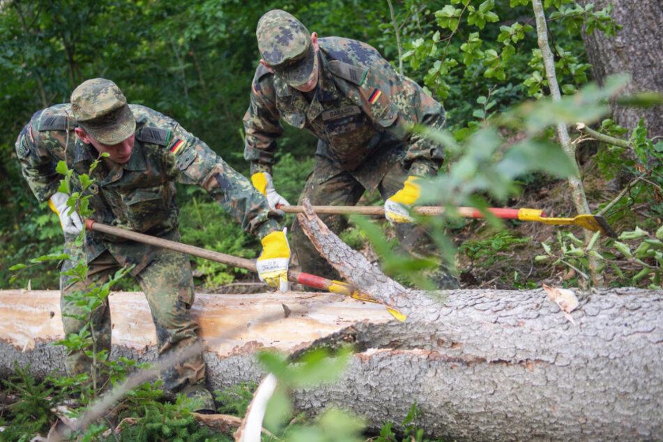 Kampfeinsatz der anderen Art: Soldaten der Bundeswehr rückten im Vorjahr dem Borkenkäfer bei Augustusburg zu Leibe. Nur entrinden hilft gegen den Befall.