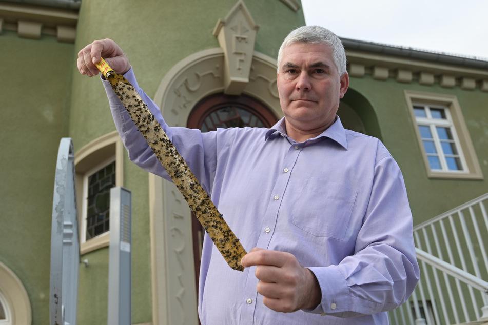 Bürgermeister Tino Kögler (49, parteilos) zeigt das Ausmaß der Fliegenplage.