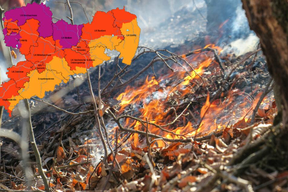 Chemnitz: Hohe Waldbrandgefahr! Das müsst Ihr jetzt beachten