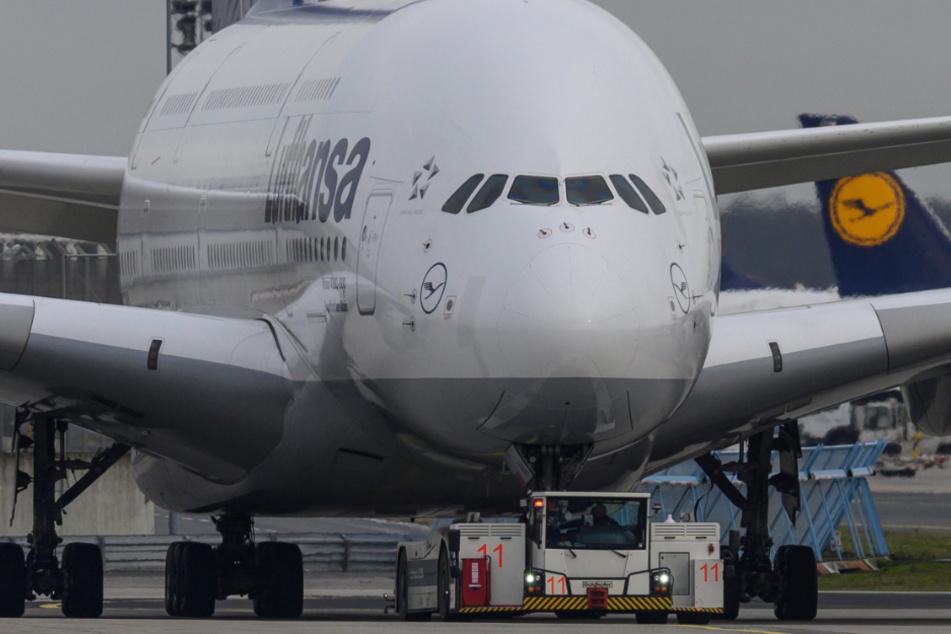 Ein Airbus A-380 der Lufthansa wird über das Rollfeld des Flughafens in Frankfurt zu seiner Parkposition gezogen.