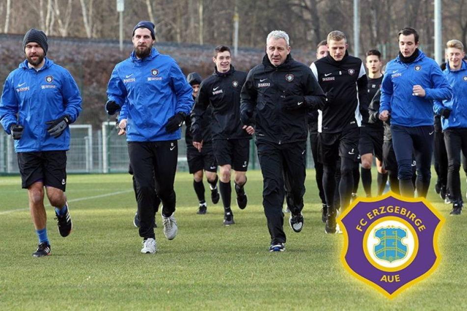 Aue-Trainer Dotchev verrät seinen Trainingslager-Plan