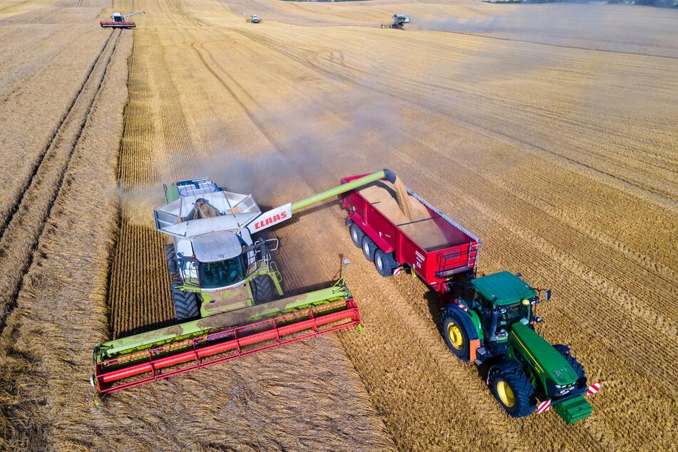 Für Ackerland mussten die Landwirte pro Hektar im vergangenen Jahr im Schnitt 614 Euro zahlen.