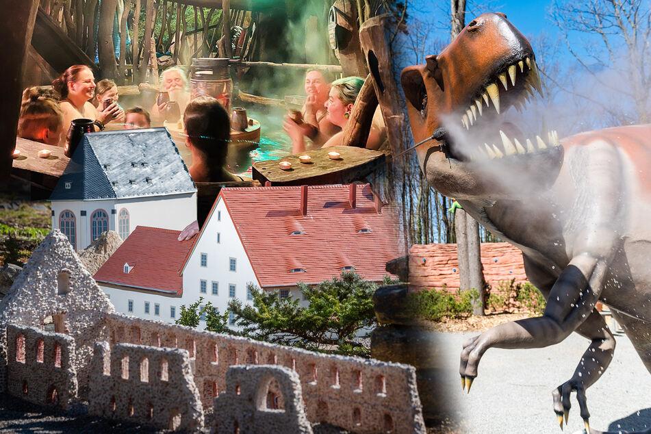In Sachsens Freizeitparks gibt's tolle Neuigkeiten