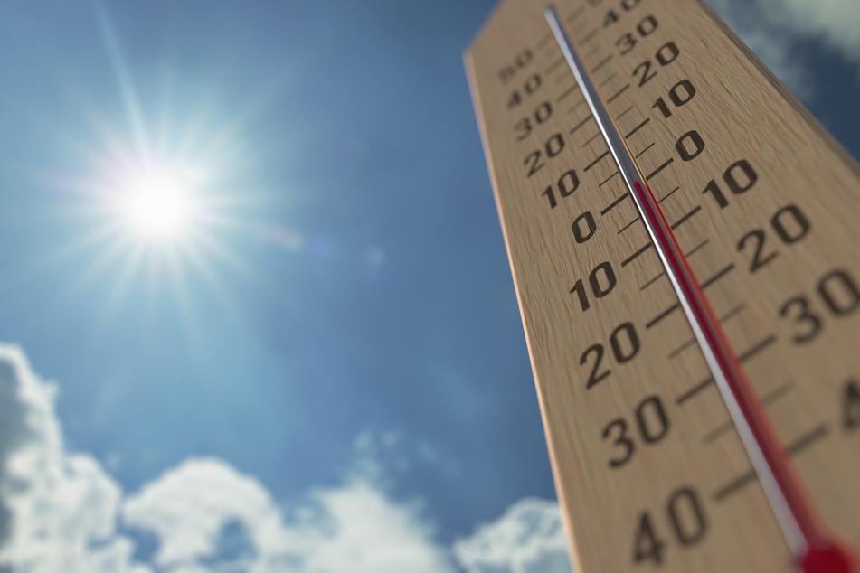 Modellrechnungen von Forschern zeigen, dass die Zahl der Hitzetoten hierzulande im weltweiten Vergleich weit vorne liegt. (Symbolbild)