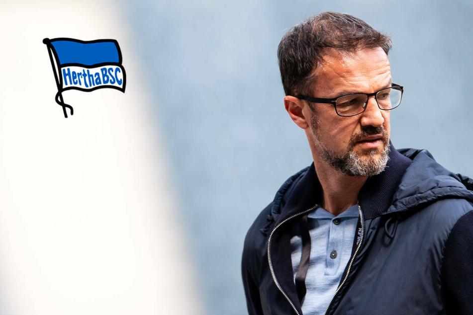 Hertha BSC: Bobic-Vertrag auch für Zweite Bundesliga gültig!